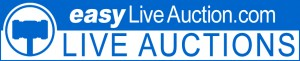 easy_live_auction_live_auctions