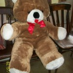 Bill's teddybear