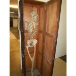 Skeleton in Cupboard fetches £440 – 2016