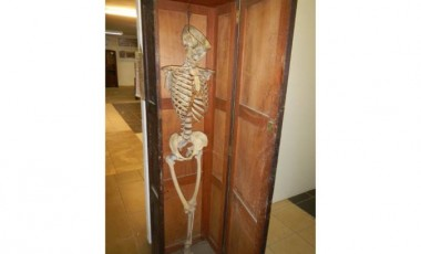 Skeleton in Cupboard fetches £440