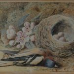 William Henry Hunt (1790-1864) Bird And Nest Painting