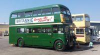 buses on display