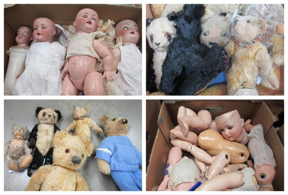 dolls teddy collage
