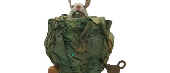 Roullet et Decamps Rabbit in Cabbage Automaton